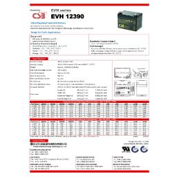 CSB 12V. 39AH (195X130X155) CICLICAS SER